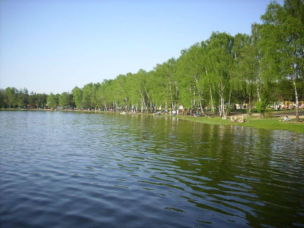 Lake Zagłębocze. Author: Grzegorz W. Tężycki. License license CC BY-SA 4.0