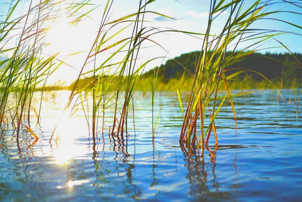 Озеро Ротце - Грабняк