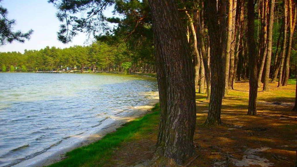 Озеро Бялка. Рисунок. Grzegorz W. Tężycki, лицензия CC-BY 4.0